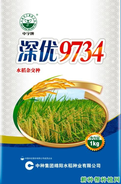 深优9734水稻品种好不好?